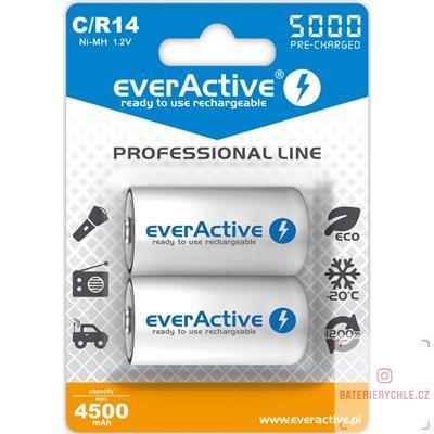 Nabíjecí baterie everActive professional line C 5000mAh 2ks, blistr